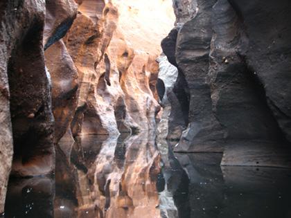 gul-savanah-tour-1