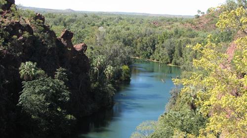 gulf-savannah-tours